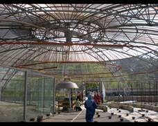 GAMMA Greenhouse inside view